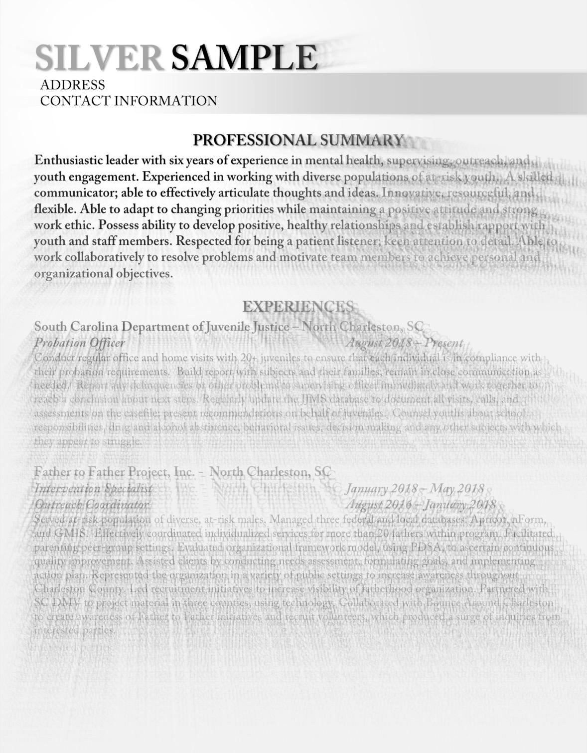 silver resume sample